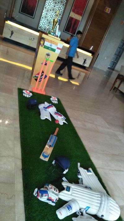 20190605_cricket-display-at-pride-plaza_