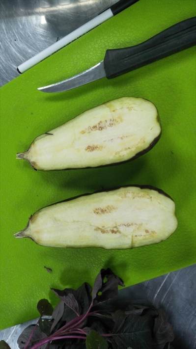 20190713_brinjal-2-weeks-stored-in-our-w